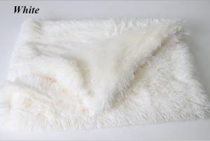 Pet Soft Fluffy Sleep Mats